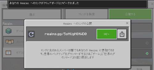 Realms公開アドレスコピー画像